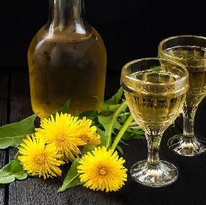 Wino z mniszka: przepis prosto z Anglii